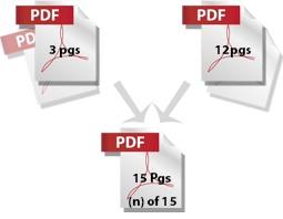 pdf_graphic